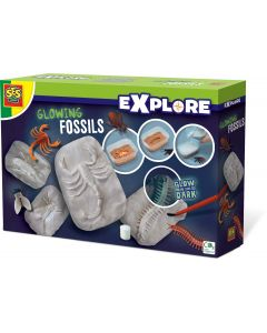 SES Creative Explore Glowing fossils